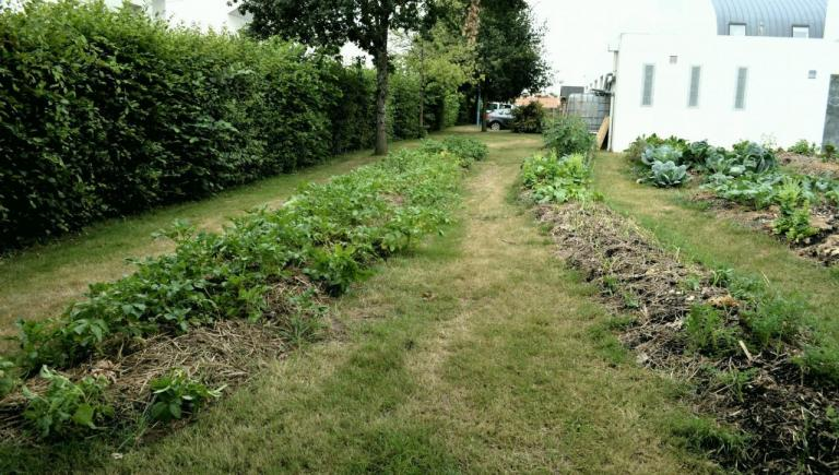 jardin partagé permaculture